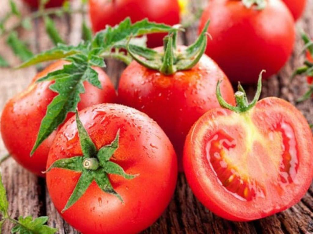 Tại sao ăn cà chua lại không tốt cho...