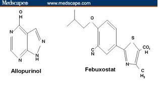 Allopurinol và febuxostat trong điều trị gút! (kỳ 3)