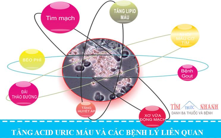 Acid uric máu  và những điều cần biết